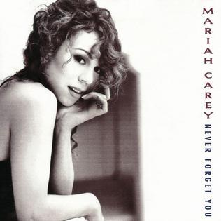 Never Forget You (Mariah Carey song) 1994 single by Mariah Carey