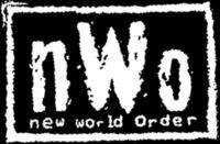 New World Order (professional wrestling) Professional wrestling stable