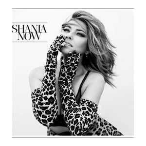 [Image: Shania_Twain_-_Now_%28Official_Album_Cover%29.png]
