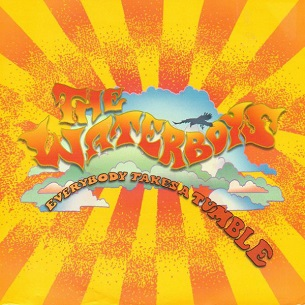 Everybody Takes a Tumble 2007 single by The Waterboys