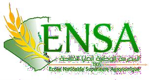 other organization in Algiers, Algeria
