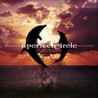 So Long, and Thanks for All the Fish (A Perfect Circle song) single by A Perfect Circle