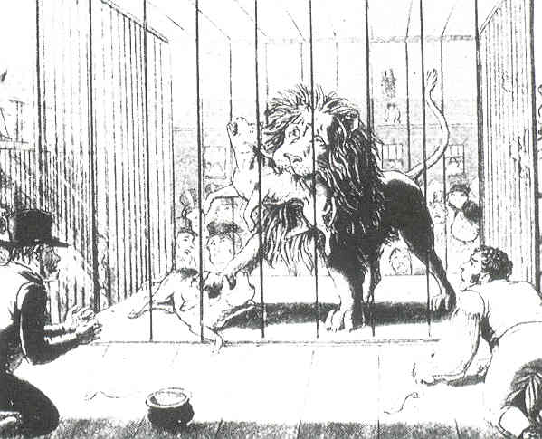 File:Lion-baiting7.jpg