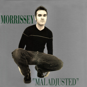 definition of maladjusted