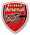 Berekum_Arsenal_Logo.png