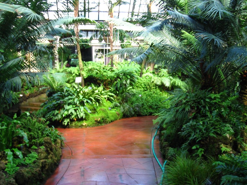 Image result for garfield park conservatory