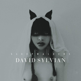 <i>Sleepwalkers</i> (David Sylvian album) 2010 compilation album by David Sylvian