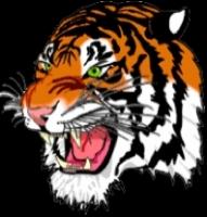 Helensburgh Tigers sports team