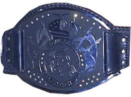 NWA Southeastern Heavyweight Championship (Southern Division) Professional wrestling championship