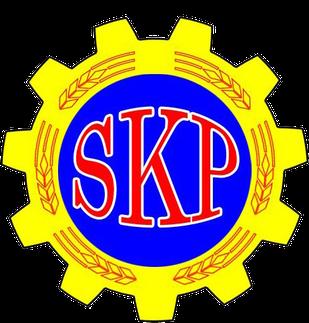Communist Party of Sweden (1995)