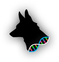 https://upload.wikimedia.org/wikipedia/en/0/0b/Mongrel_2_logo.png