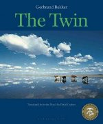 <i>The Twin</i> (novel) book by Gerbrand Bakker