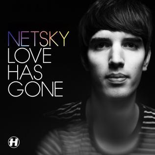Love Has Gone 2012 single by Netsky