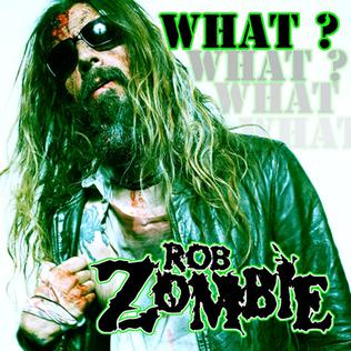 What? (song) 2009 single by Rob Zombie