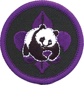 conservation award provided by national scout associations