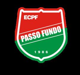 Esporte Clube Passo Fundo Football club in Brazil