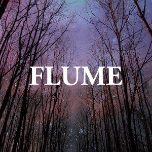 Flume featuring Antony for Cleopatra - Sleepless (studio acapella)