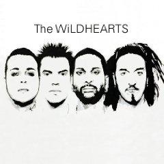 <i>The Wildhearts</i> (album) 2007 studio album by The Wildhearts