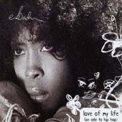Love of My Life (An Ode to Hip-Hop) 2002 single by Erykah Badu featuring Common