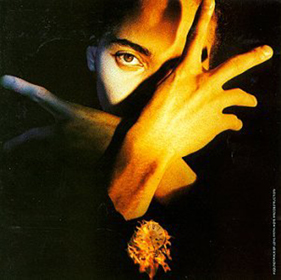 <i>Neither Fish nor Flesh</i> 1989 studio album by Terence Trent DArby
