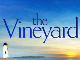 <i>The Vineyard</i> (TV series) television series