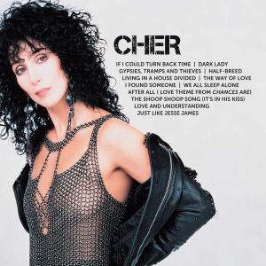 <i>Icon</i> (Cher album) 2011 greatest hits album by Cher