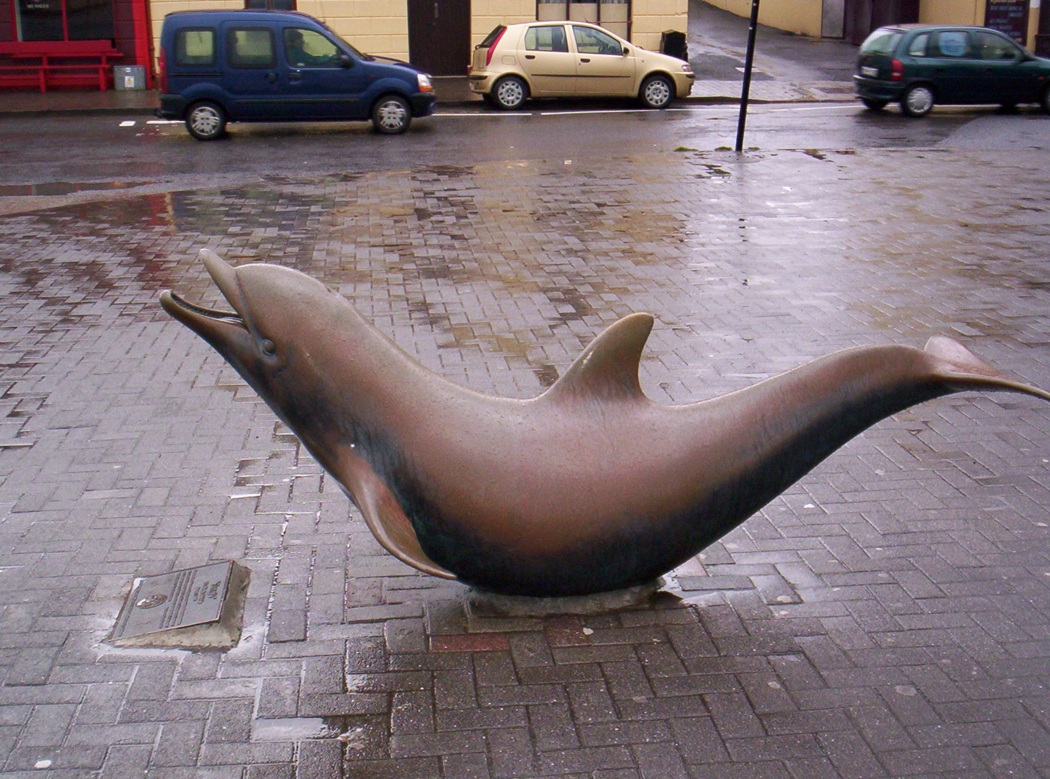 File Fungie The Dolphin Statue Jpg Wikipedia They hunt by emitting ultrasonic sounds, which bounces off of fish and other prey, enabling them to see an image in their. https en wikipedia org wiki file fungie the dolphin statue jpg