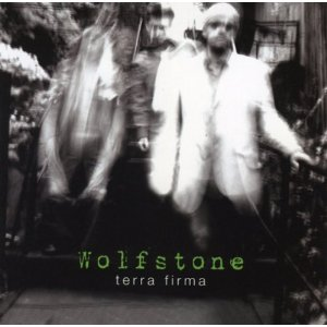 <i>Terra Firma</i> (Wolfstone album) 2007 studio album by Wolfstone