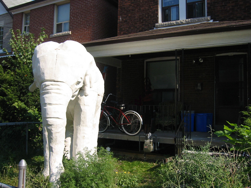 File:Elephant House Toronto.jpg