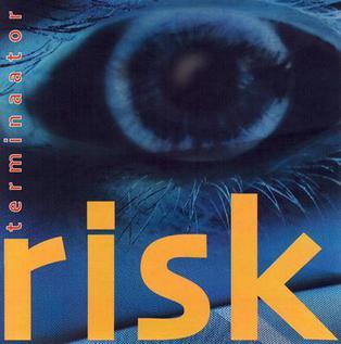 Risk album cover