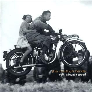 <i>Rain, Steam and Speed</i> 1999 studio album by The Mutton Birds