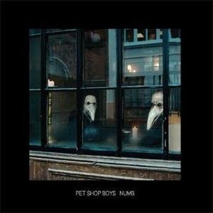 Numb (Pet Shop Boys song) 2006 song by Pet Shop Boys