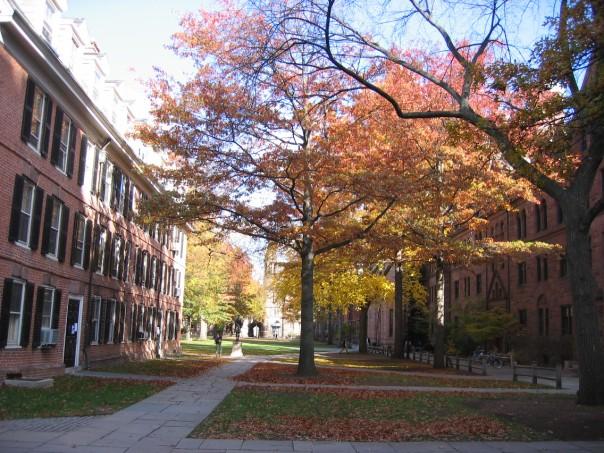Old Campus, Yale University (2).jpg