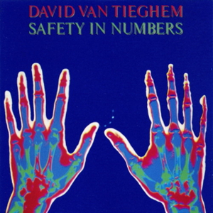 <i>Safety in Numbers</i> (David Van Tieghem album) album by David Van Tieghem