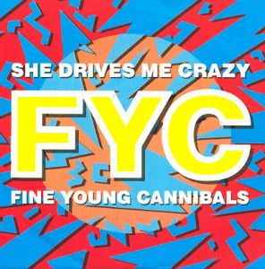 Fine Young Cannibals — She Drives Me Crazy (studio acapella)