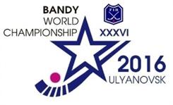 2016 Bandy World Championship 2016 edition of the Bandy World Championship