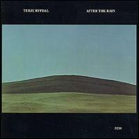 <i>After the Rain</i> (Terje Rypdal album) 1976 studio album by Terje Rypdal