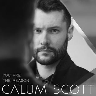 You Are the Reason 2017 single by Calum Scott