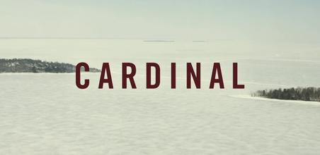 Picture of a TV show: Cardinal