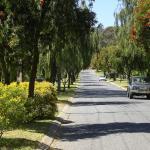 Banksia Park, South Australia Suburb of Adelaide, South Australia