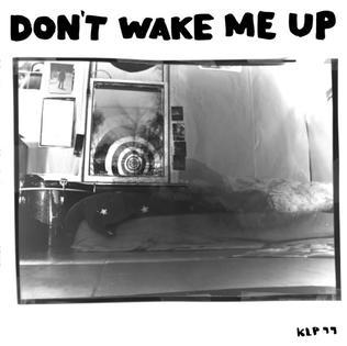Don't Wake Me Up (album) - Wikipedia
