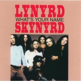 What's Your Name (Lynyrd Skynyrd album)