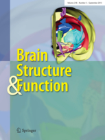 <i>Brain Structure and Function</i> peer-reviewed scientific journal