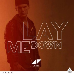 Avicii - Lay Me Down (studio acapella)