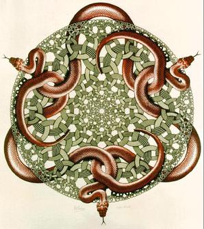 Snakes SAPEDIA