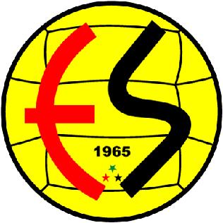 Eskişehirspor association football club in Turkey