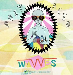 Post Acid 2010 single by Wavves