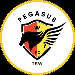 TSW Pegasus FC Association football club