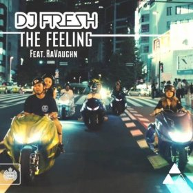 DJ Fresh featuring RaVaughn — The Feeling (studio acapella)