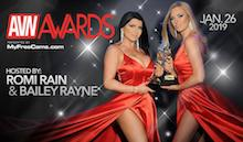 36th AVN Awards Pornography award show